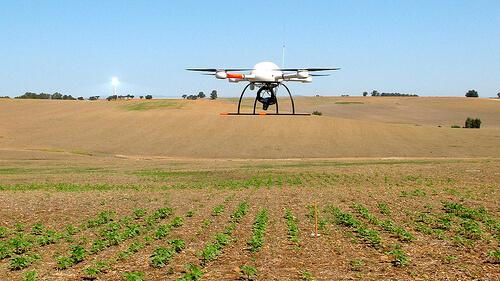 drone fazenda