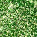 5 tecnologias que estão mudando a agricultura