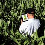O que é um Software de Gestão Agrícola?