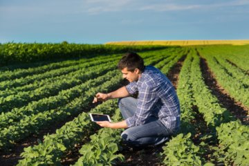 software para fazenda
