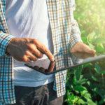 Como controlar os custos com um software de gestão agrícola