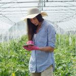 3 maneiras de lucrar mais com um software de gestão agrícola
