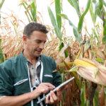 Como um software de gestão agrícola melhora seu controle financeiro