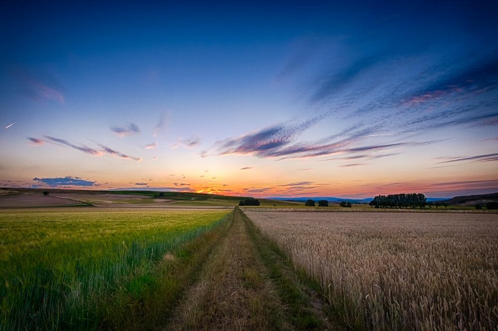 fazenda com planejamento agrícola