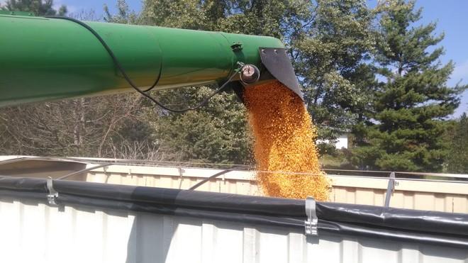 Gestão agrícola ajuda produtores de Illinois