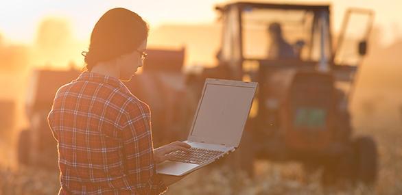 Produtora utilizando um sistema de gestão agrícola