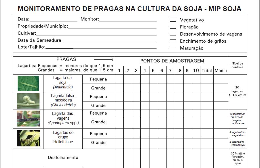 Ficha MIP Soja