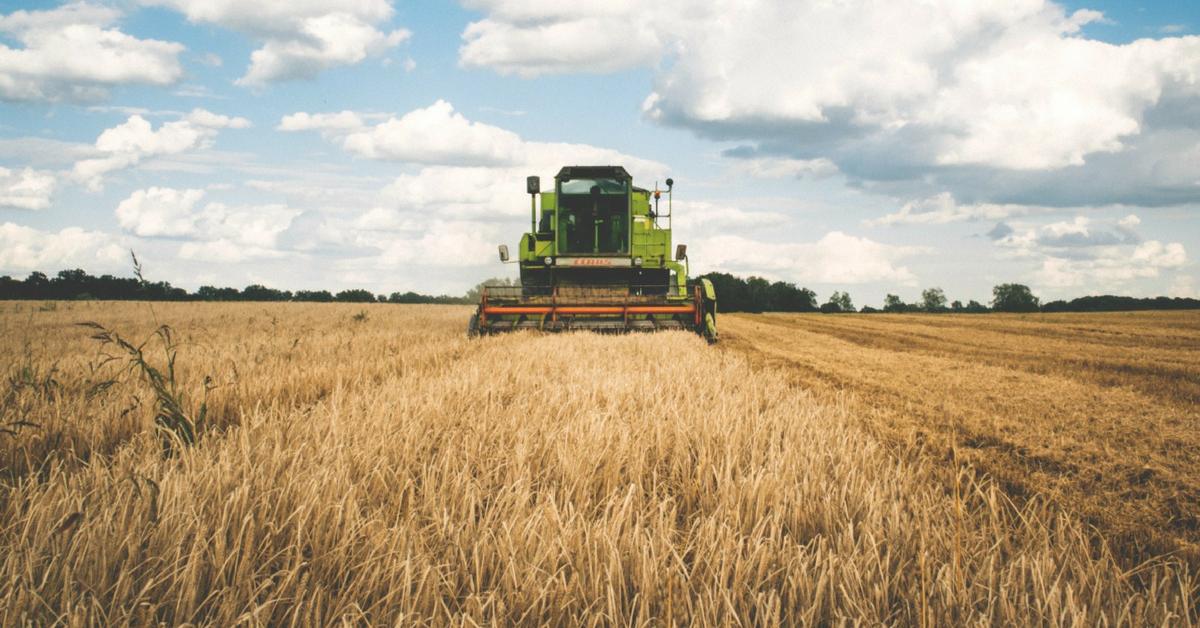 colheita com planejamento agrícola