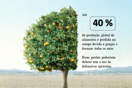 Impotância Defensivos agrícolas
