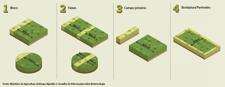 manejo-o-que-e-o-refugio-no-agronegócio-brasileiro