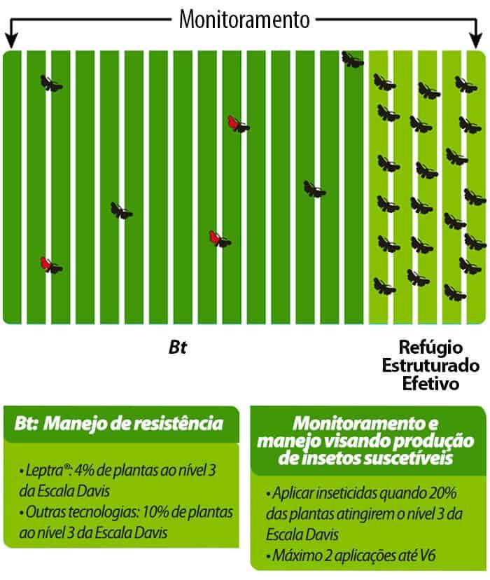 Boas-Praticas-BioGene-Monitoramento