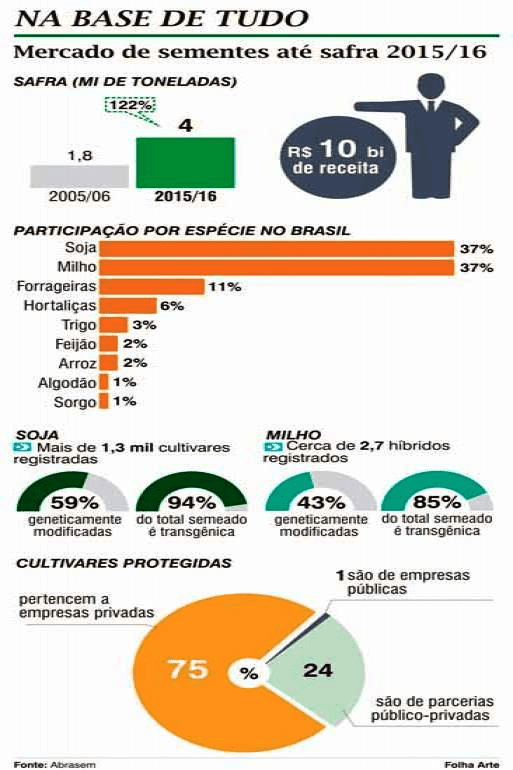 mercado de semente de milho no brasil