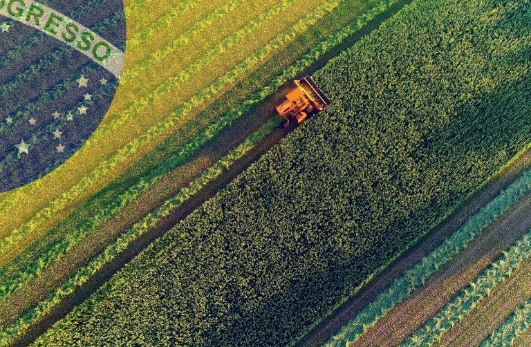 Resultado de imagem para brasil agricultura
