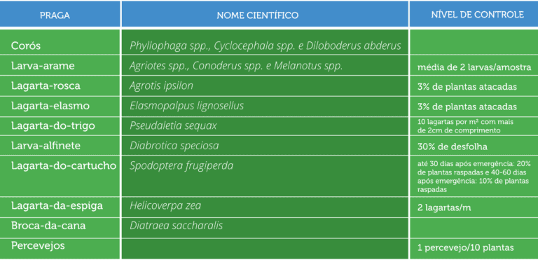 nível-de-controle-spodoptera-frugiperda