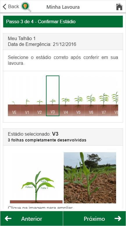 7-tecnologia-na-agricultura-doutor-milho