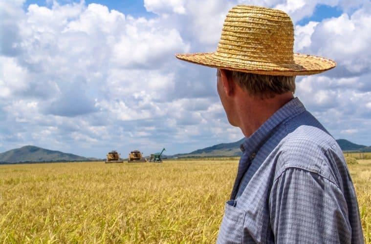 contabilidade-rural