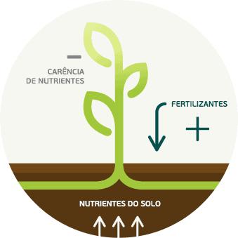 1- fertilidade-do-solo-e-nutrição-de-plantas