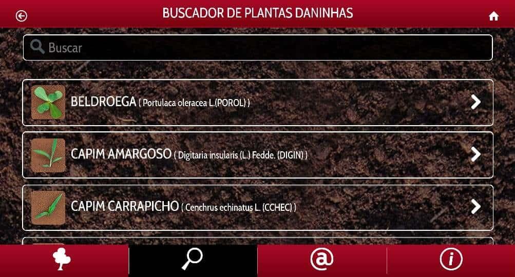 5-identificação-de-plantas-daninhas