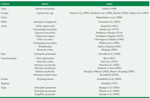 7-inseticidas-naturais
