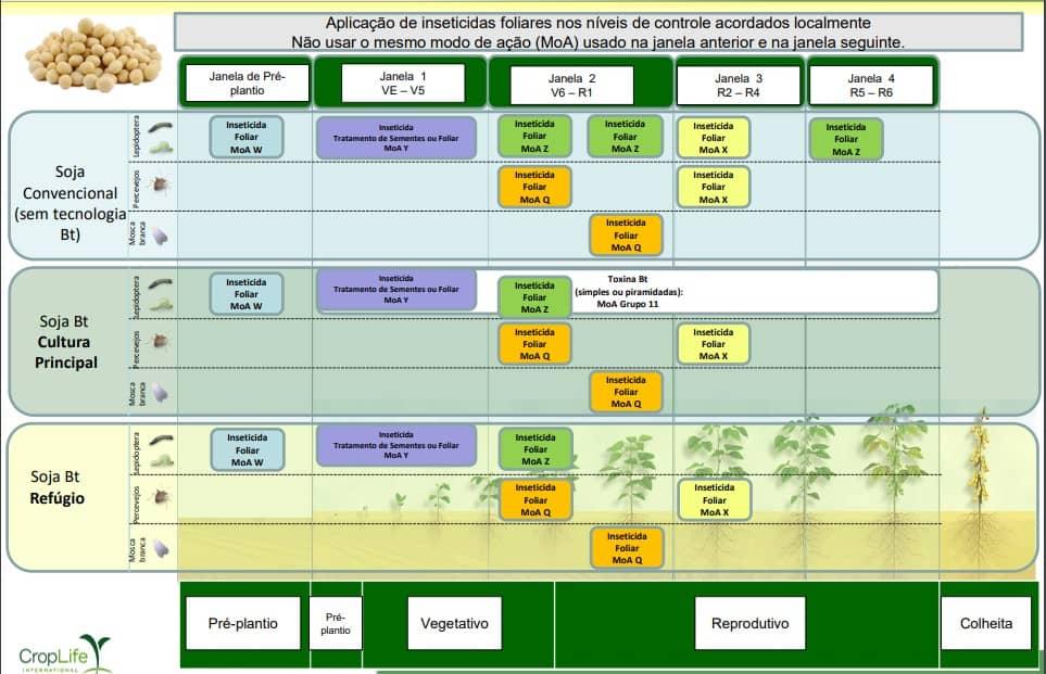 9-inseticidas-janela-aplicação