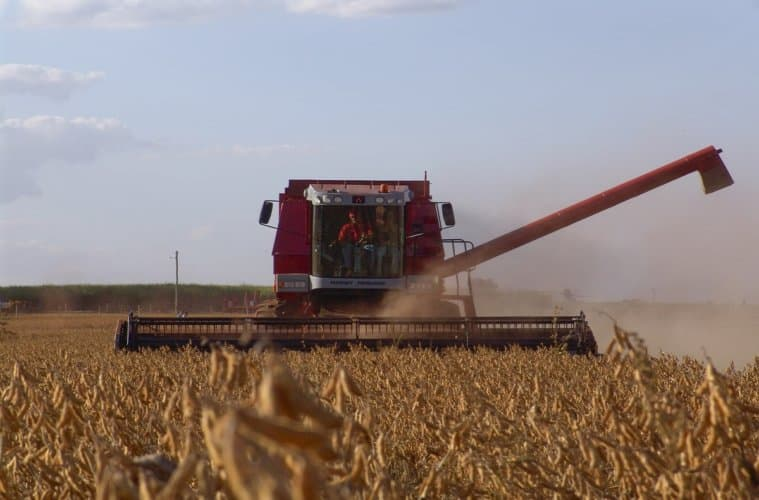 colheita de soja 2019