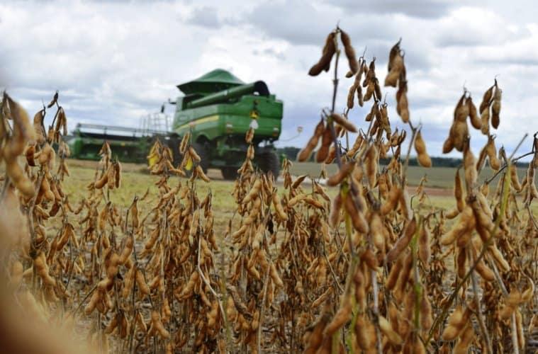colheita-de-soja
