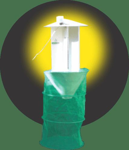 monitoramento de pragas