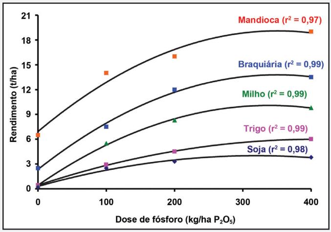 fósforo nas plantas