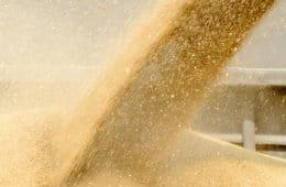 armazenamento de grãos