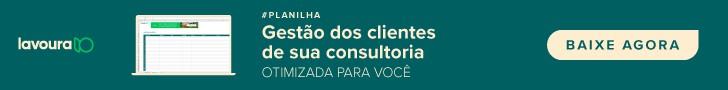planilha Aegro para gestão de clientes da consultoria, baixe agora
