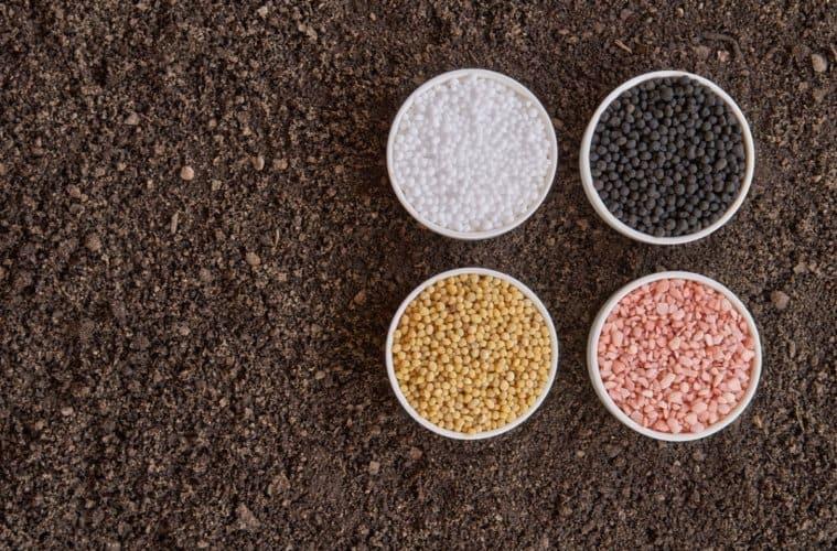fertilizantes 2019