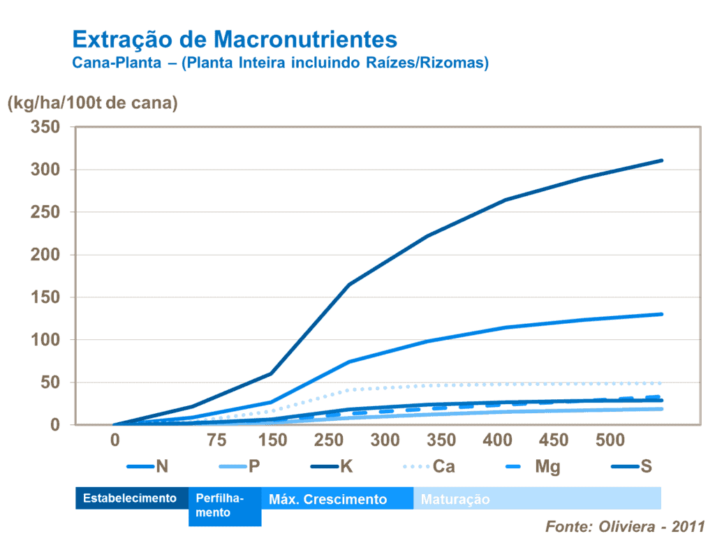 macronutrientes cana