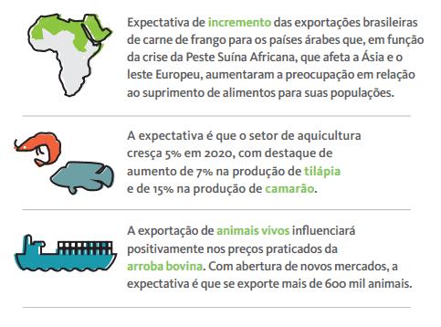 Agronegócio Brasileiro 2020