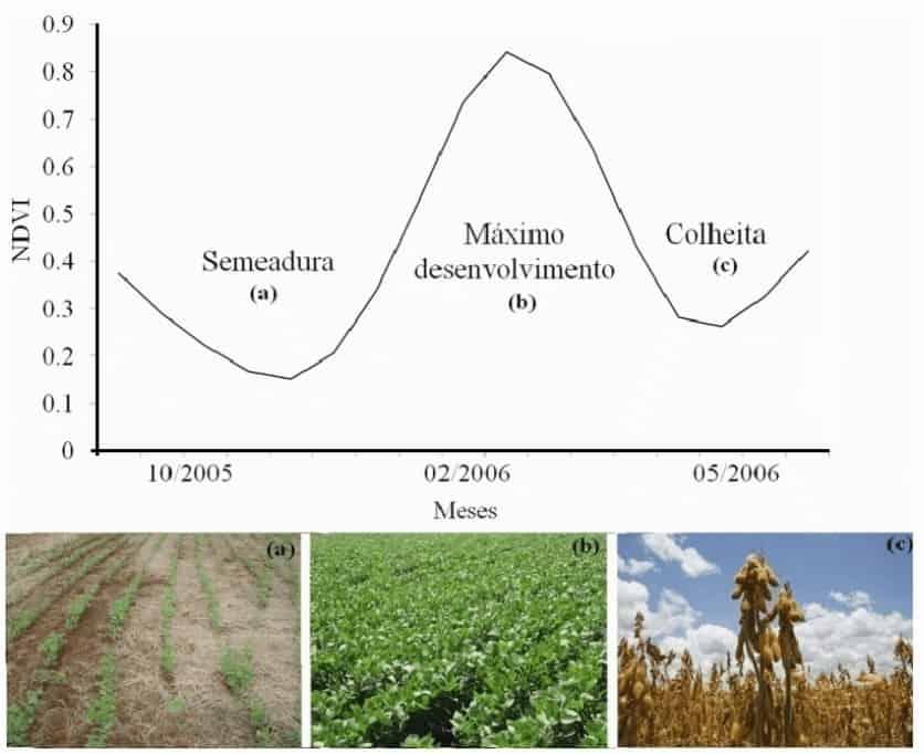 Perfil temporal das áreas de soja da região norte do Rio Grande do Sul