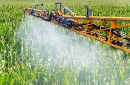 aplicação de defensivos para pragas do milho