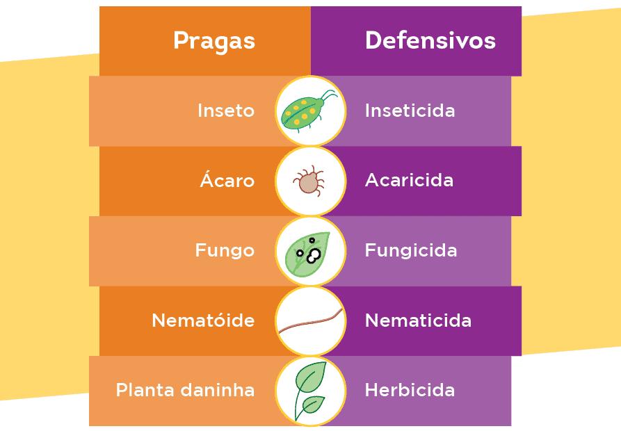 Pragas dos cultivos agrícolas e seus defensivos