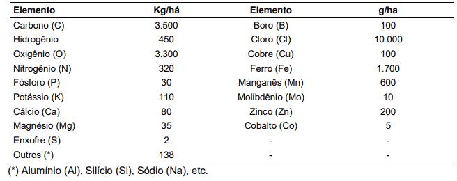 Composição elementar de uma cultura de soja