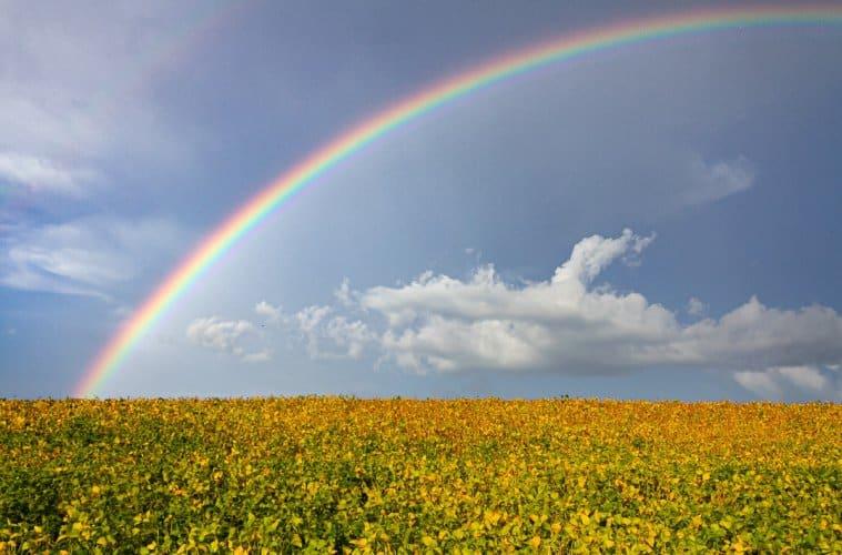 relação entre clima e agricultura