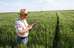 software para produtor rural
