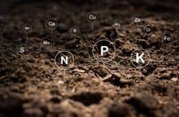 fertilidade do solo e adubação