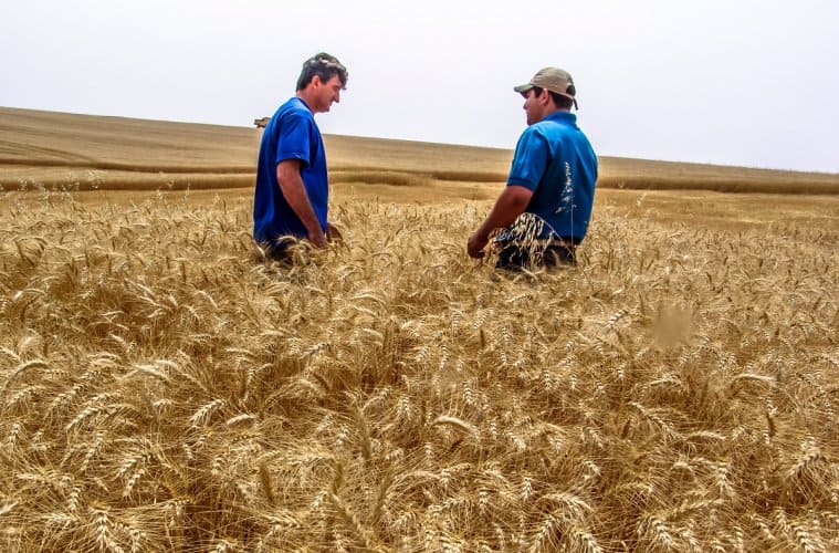 sucessão familiar na agricultura