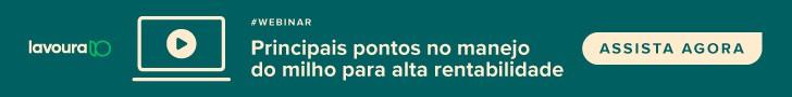 webinar principais pontos no manejo do milho para altas rentabilidades Aegro, assista agora