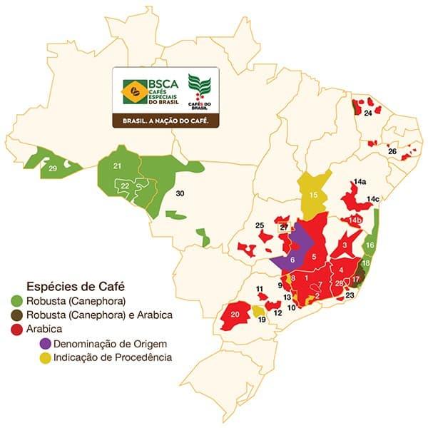 Regiões brasileiras produtoras de café arábica e robusta