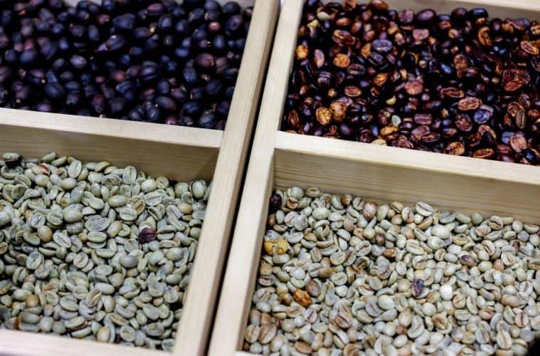 produção de cafés especiais