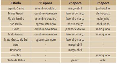 tabela com épocas de semeadura para a cultura do feijão nos estados da região Central brasileira