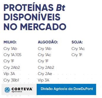 tabela com proteínas Bt disponíveis no mercado para milho, algodão e soja.