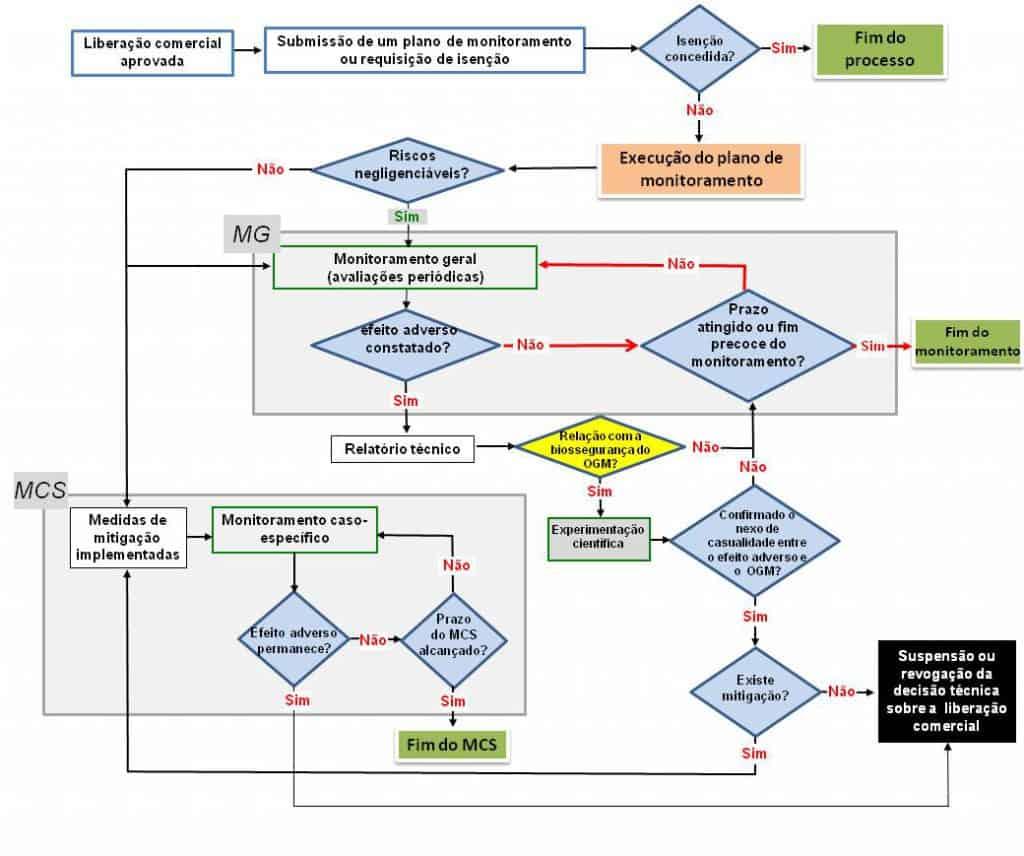 organograma complexo com as etapas da biossegurança do CTNBio
