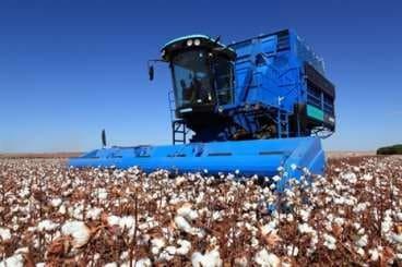 foto de uma colhedora stripper da Agroads - colheita mecanizada de algodão