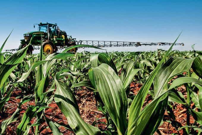 foto de um trator de pulverização de herbicida em um campo de milho em desenvolvimento