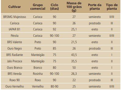 Características de algumas cultivares de feijão indicadas para o estado de Minas Gerais